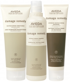 Aveda Damage Remedy Collection